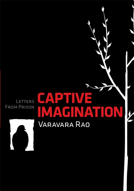 Captive Imagination